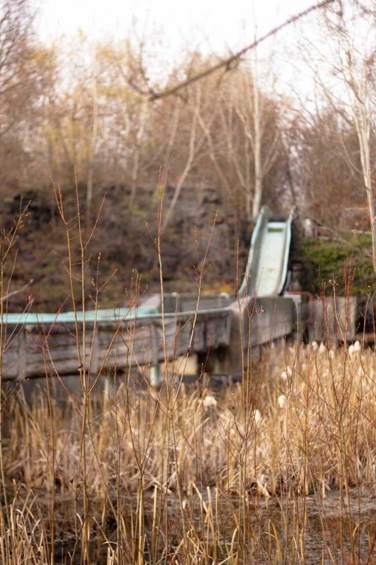 DB MG 0818 111124 733x1100 Spreepark im Plänterwald
