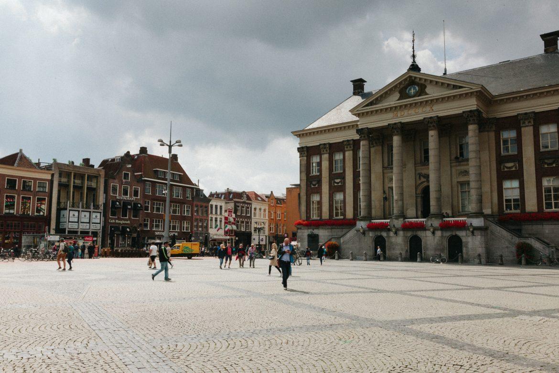 Groningen und ein paar Robbenbabies