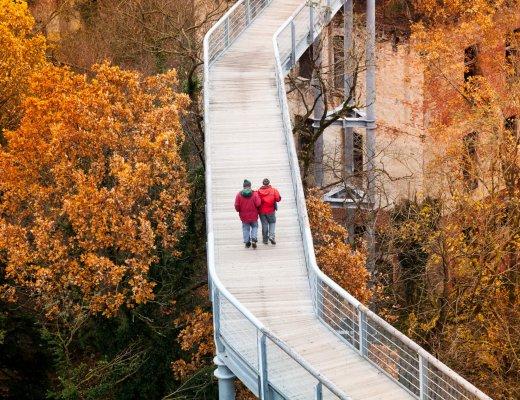 Baumkronenpfad Beelitz-Heilstätten